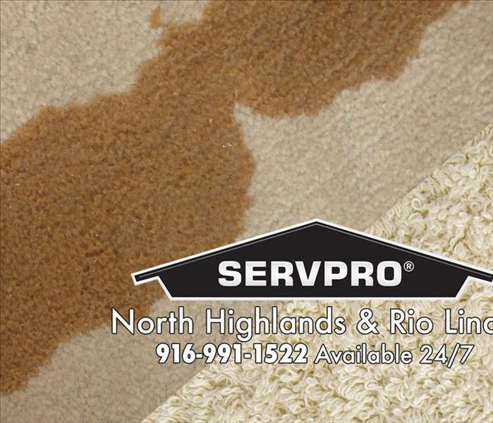 Commercial Keeping Your Business's Carpets Clean